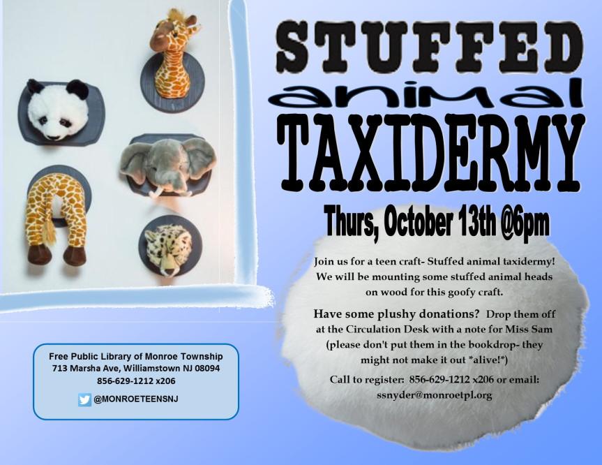 stuffed-animal-taxidermy